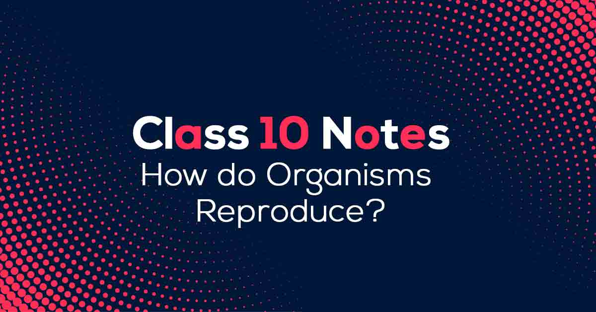 How do Organisms Reproduce? Class 10 Notes