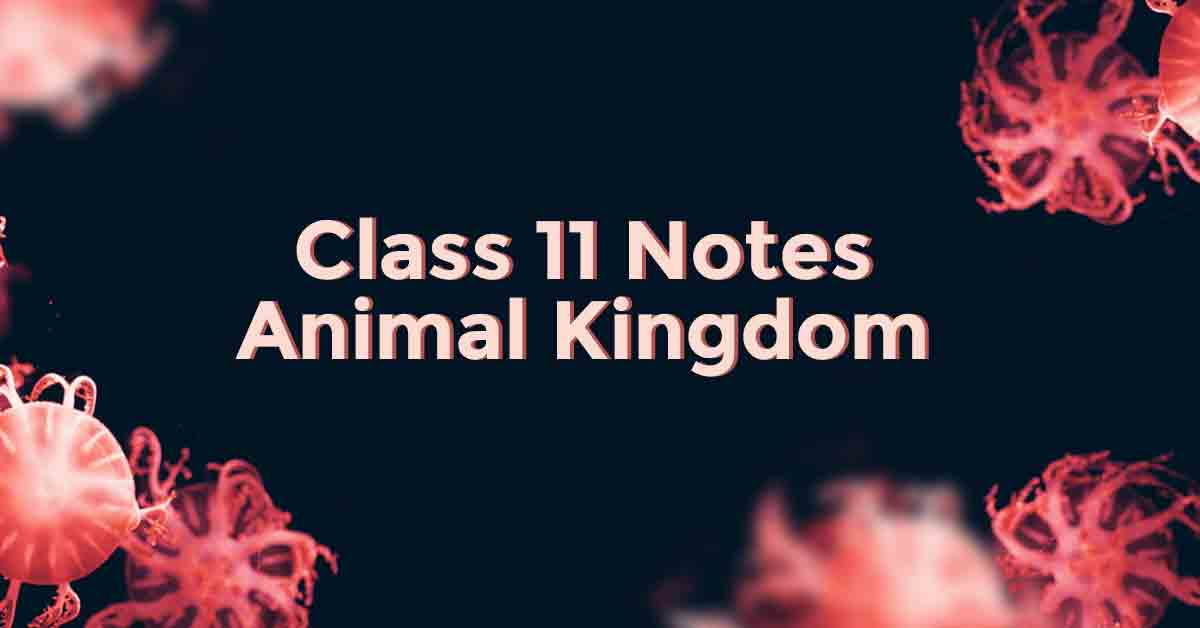 Animal Kingdom Class 11 Notes
