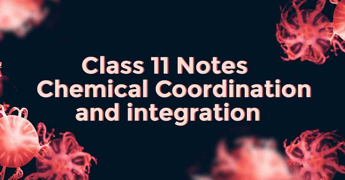 Chemical Coordination and integration Class 11 Notes