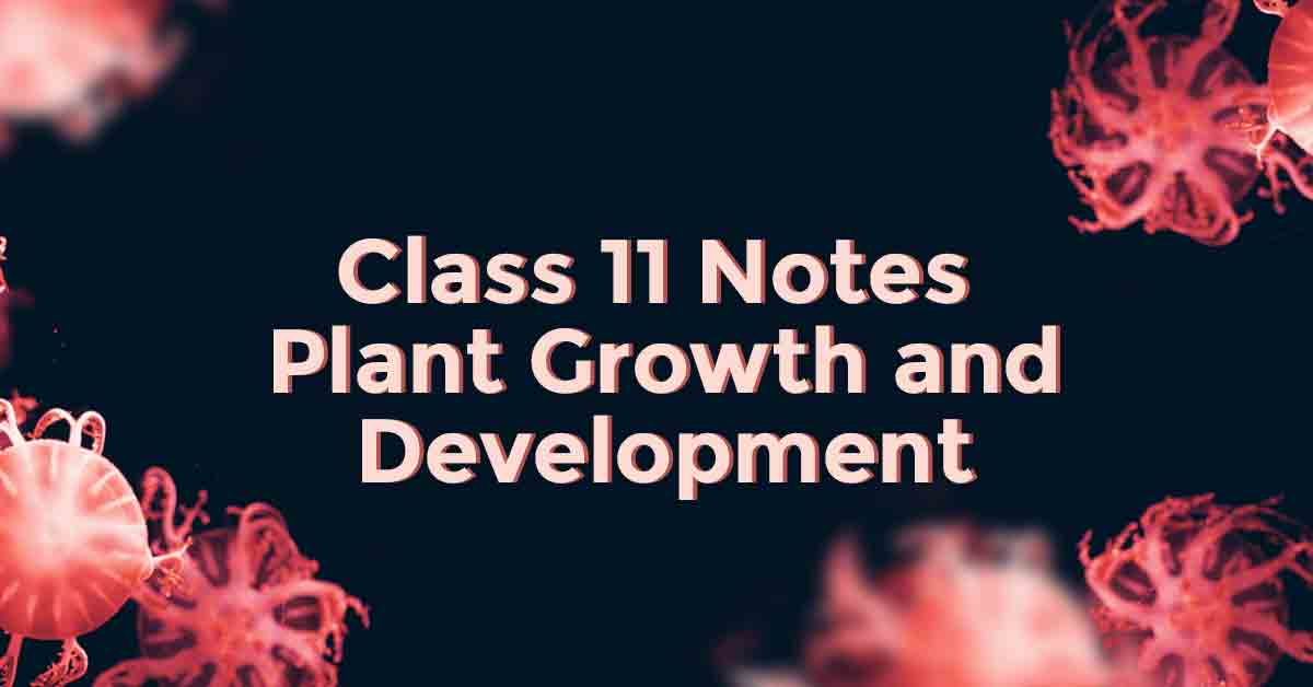 Plant Growth and Development Class 11 Notes