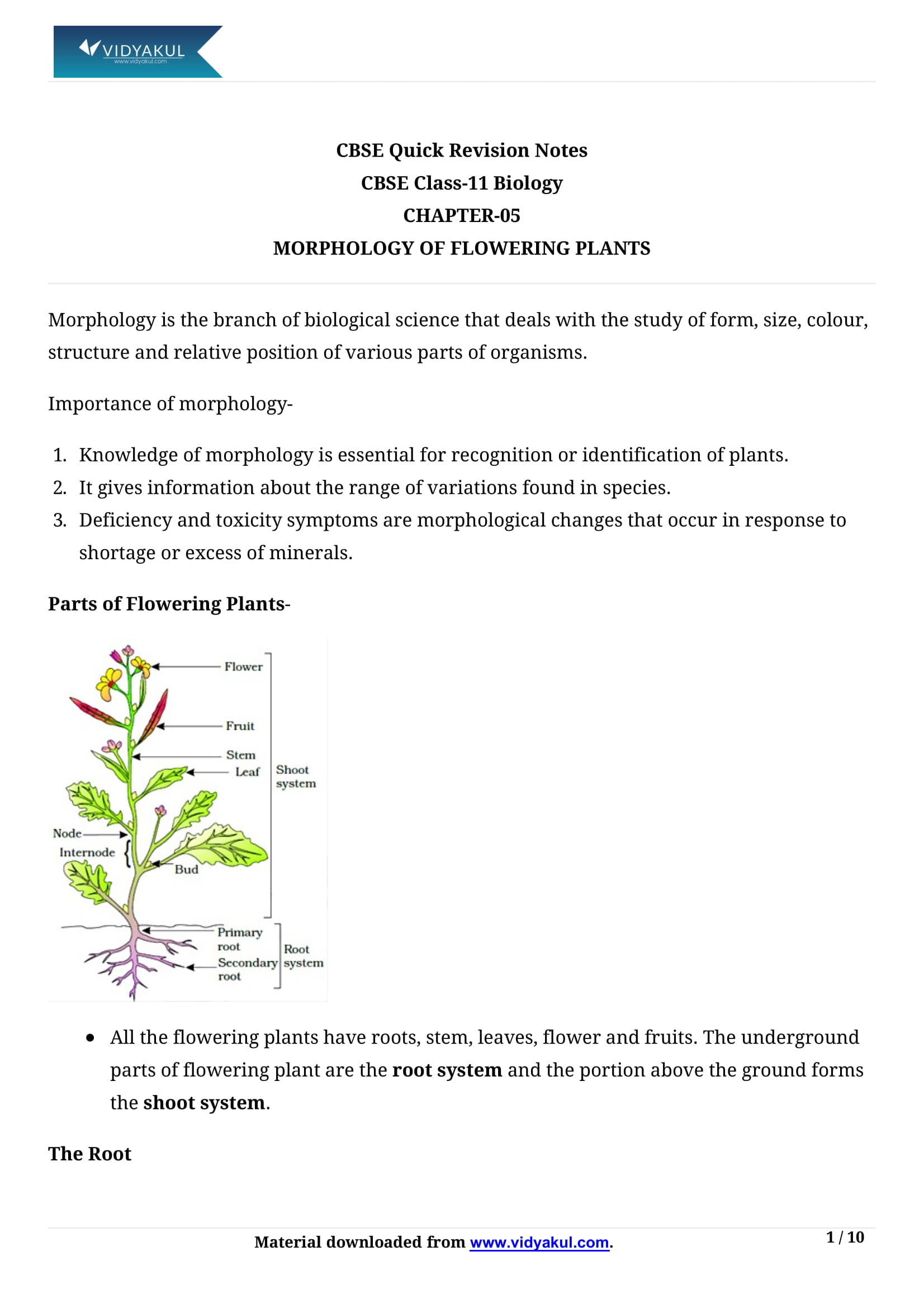 Year 11 Biology Notes Pdf