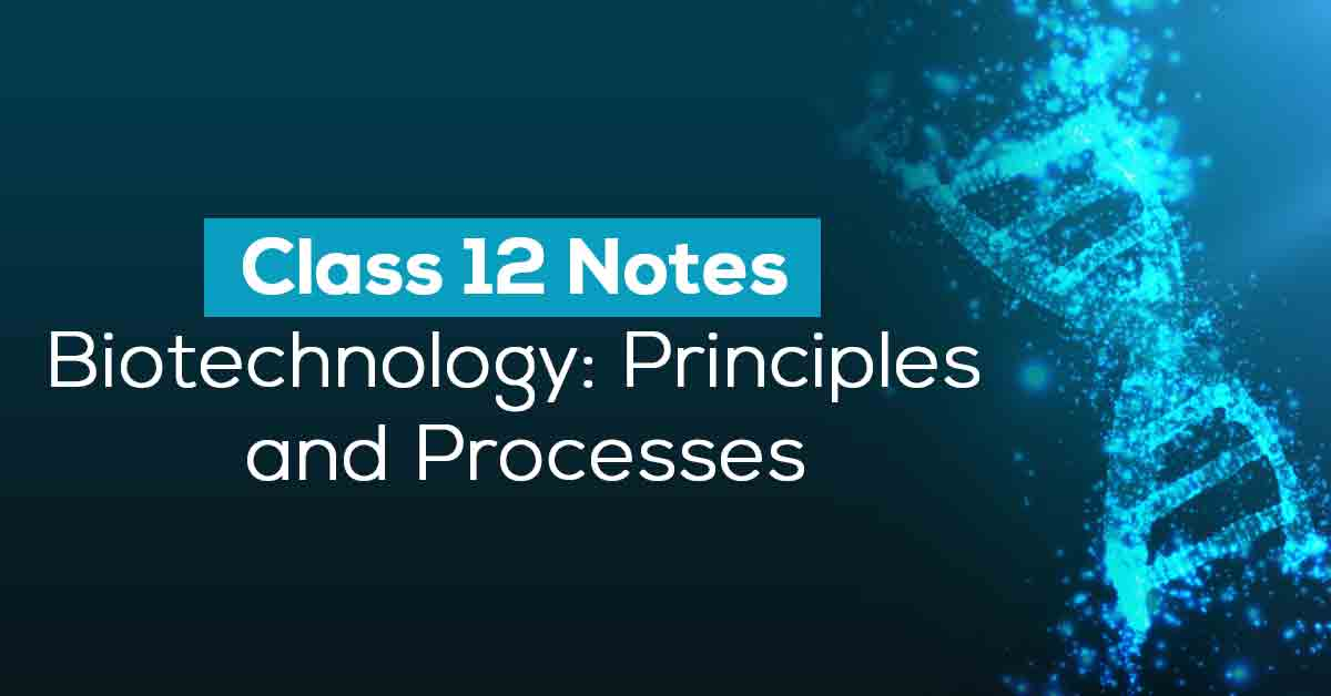 Biotechnology: Principles and Processes Class 12 Notes