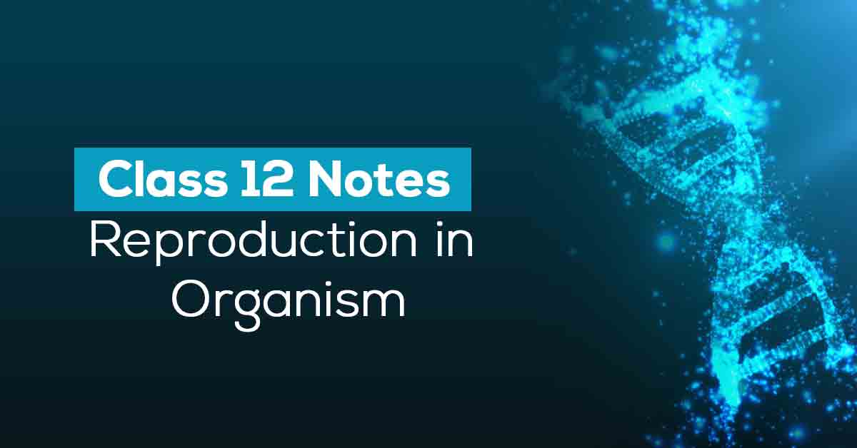 Reproduction in Organism Class 12 Notes