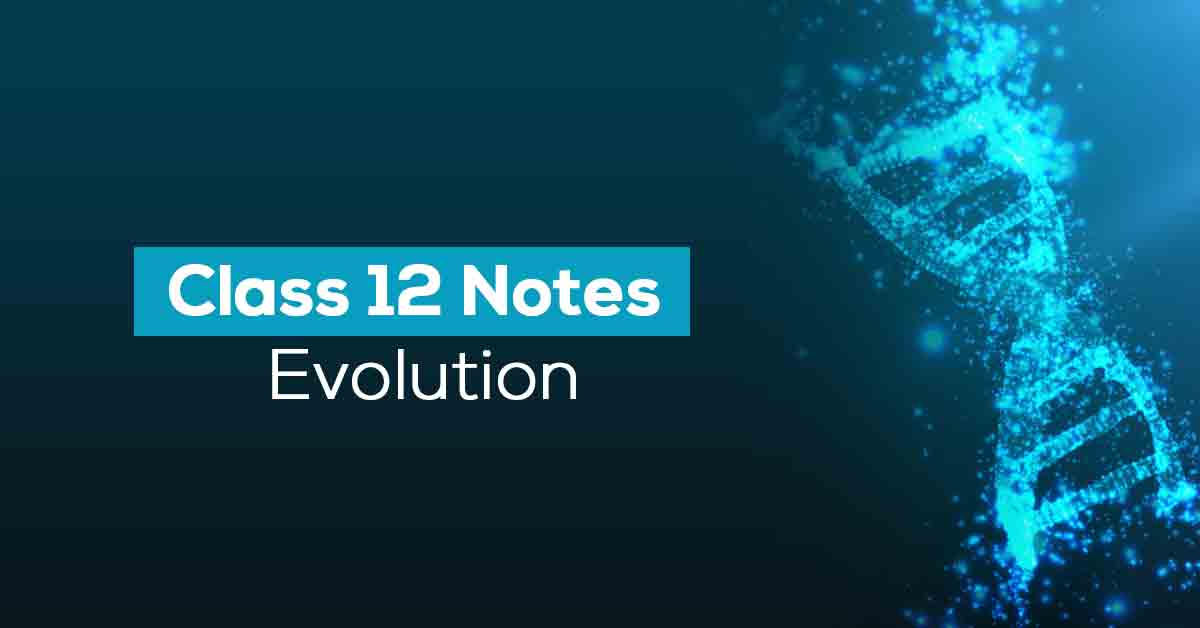 Evolution Class 12 Notes