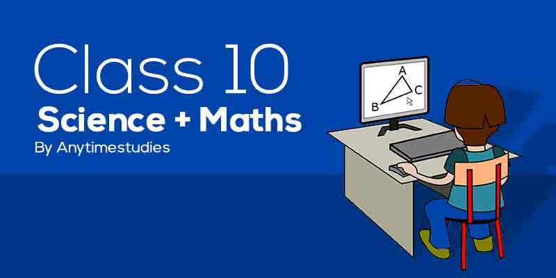 Anytimestudies Class 10 Science + Mathematics Animated Video Lecture in Hindi&English (DVD)