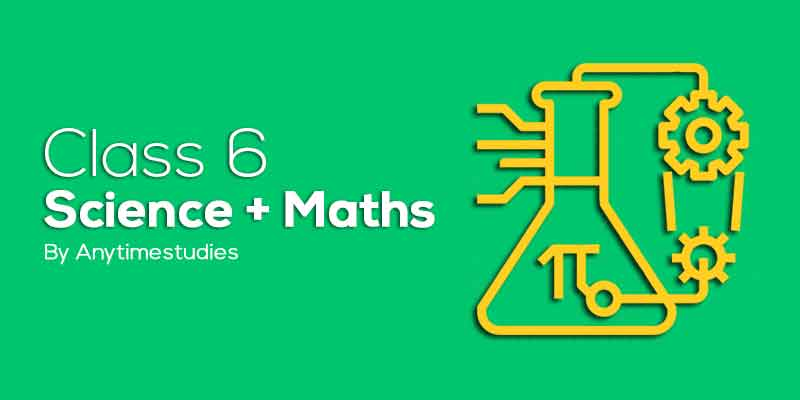 Anytimestudies Class 6 Science + Mathematics Animated Video Lecture in Hindi&English ( DVD)