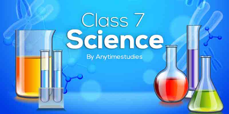 Anytimestudies Class 7 Science Animated Video Lecture in Hindi&English (DVD)