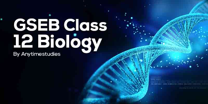 Anytimestudies GSEB Class 12 Biology Video Lecture + MCQ Explanation in Gujarati (DVD)