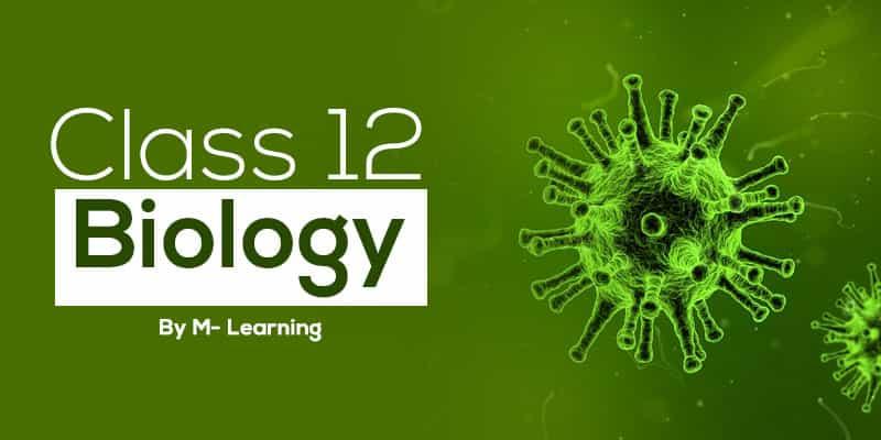 Class 12th - Biology